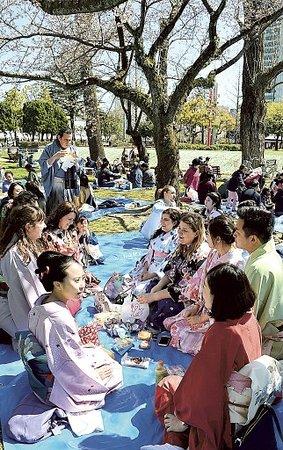 Shizuoka Prefecture, Japonia: They have a picnic under a cherry blossom in kimono at Suruga Castle Park,Sizuoka HANAMI #news via (c) at-s.com #sakura #hanami #shizuoka #surugacatsle #kimono #japan