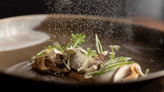 Season defining dish showcasing mushrooms and foie gras.