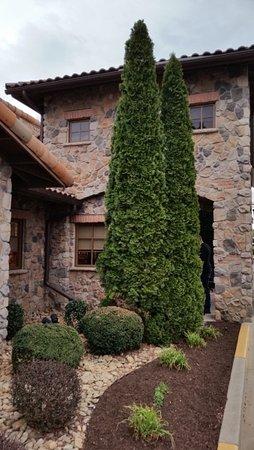 Olive Garden: Sidewalk leading to main door