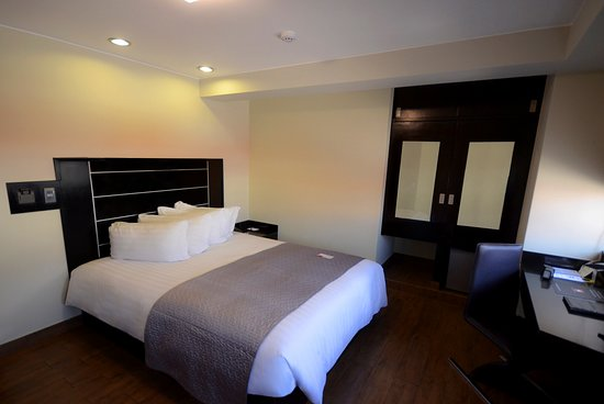qp Hotels Arequipa: Standard Room