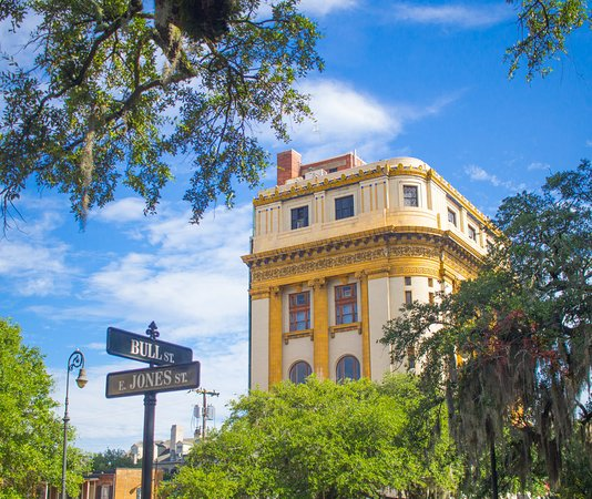 capturing savannah photography tours 2019 all you need to know rh tripadvisor com