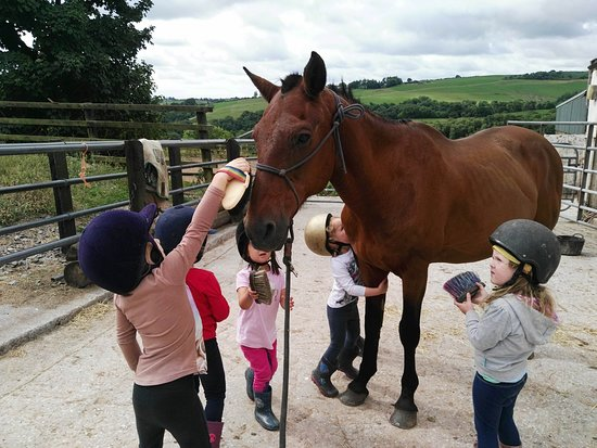 Lee Valley Equestrian Centre: Tiny tots lessons