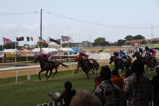 Horse race betting philippines airlines the coral betting rules