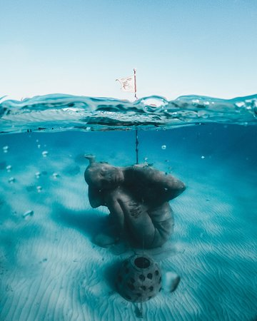 You must see the world's largest underwater sculpture in person with us!
