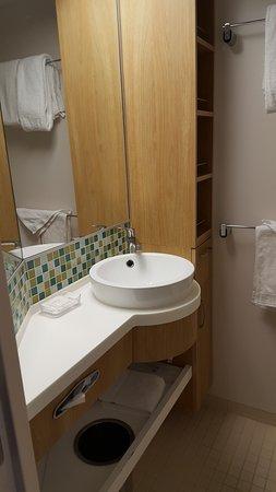 Grandeur of the Seas: OV room bathroom.