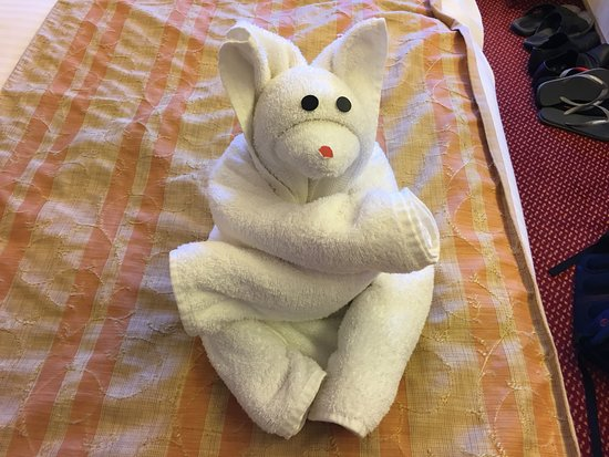 Carnival Spirit: Nightly towel animals