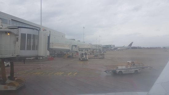 Brussels Airlines: Aéroport de Bruxelles