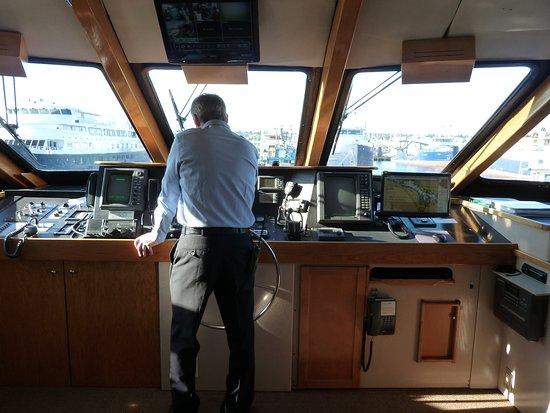 Safari Quest: Capt. Dano at the bridge