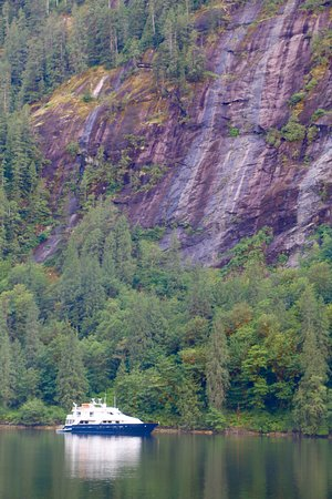 Safari Quest looking tiny next to sheer cliffs at Princess Louisa Inlet, popular summertime destination for yachts.