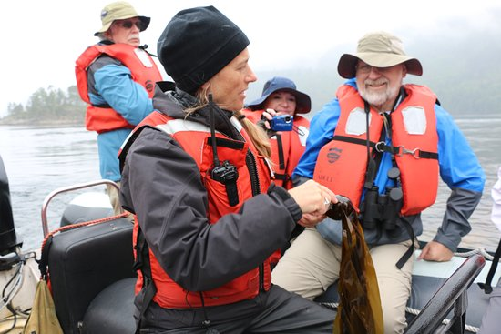 Safari Quest: Expedition leader Pam with adventurers on a Zodiak, describing the wonders of kelp.