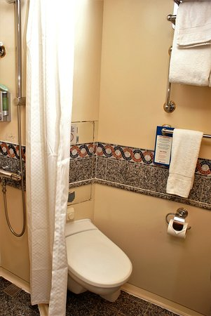 Carnival Pride: notice the cut section of wall behind toilet, i could've done without t