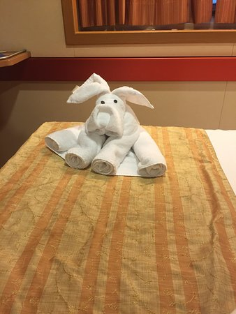 Carnival Fantasy: This a puppy dog made of towels by our steward