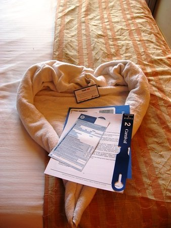 Carnival Triumph: The last evening's towel - a heart, with a note from our steward, and t