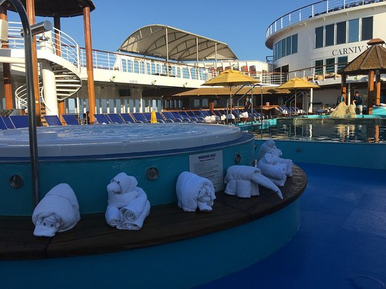 Carnival Imagination: Pool animal zoo, last day
