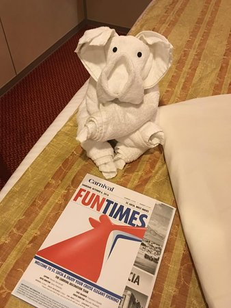 Carnival Fascination: Towel animal every night.