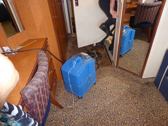 Radiance of the Seas: Drying the carpet.  Two days of intrusions into our stateroom.