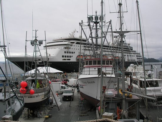 Maasdam: Port of Sitka, Alaska with fishing boats under repair.  Watching port activity can be interesting and educational too!