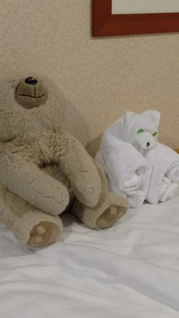 Explorer of the Seas: My 21 year old bear Schwartz and his twin towel animal who lasted for the whole two week trip!