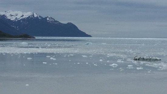 Celebrity Infinity: Near Hubbard Glacier