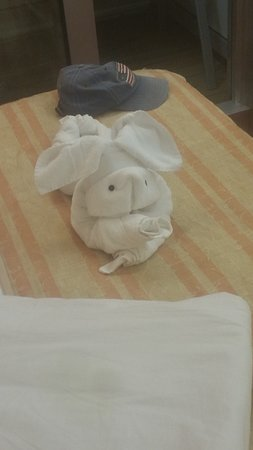 Carnival Glory: After they clean the cabin they leave these cute towel animals