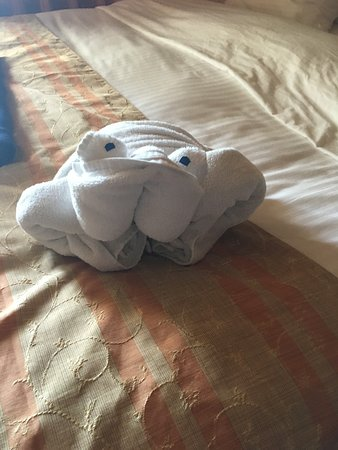 Carnival Triumph: We loved our daily towel animals