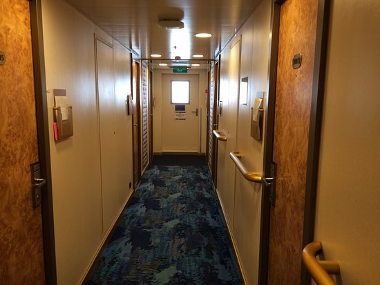 Zuiderdam: Outside cabin 10011