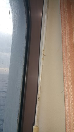 Carnival Ecstasy: Ditry curtains ..rod to close them.dirty