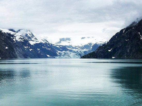 Coral Princess: John Hopkins Glacier
