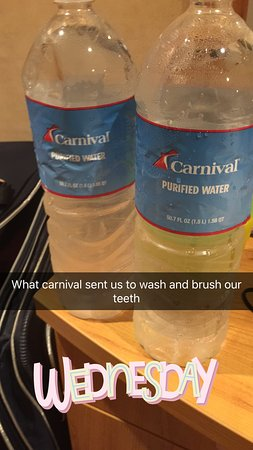 Carnival Paradise: This is what they sent to my cabin on day 4 of our five day cruise to wash and brush our teeth after we were constantly telling them every day since entering the cruise that something was wrong with the water but they never once came to our cabin!