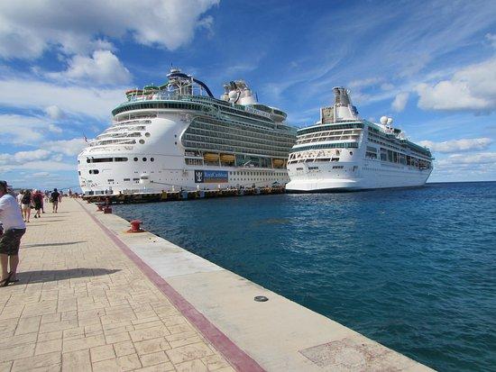 Vision of the Seas: Vision and Liberty.