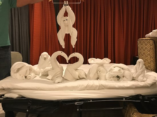 Norwegian Star: Towel animals, one a night for a week