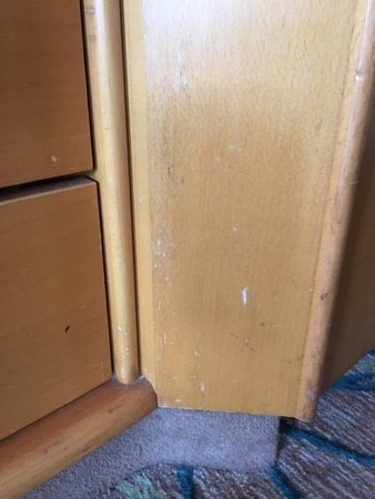 Enchantment of the Seas: Stains  on the drawers