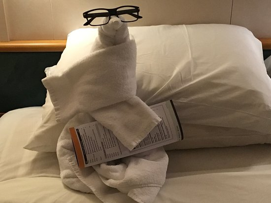 Rhapsody of the Seas: Our steward, Gloria, made cute things out of towels on three nights.  This