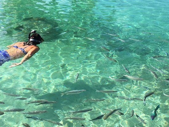 Wind Spirit: Snorkel time in the crystal clear water of Bora Bora FP