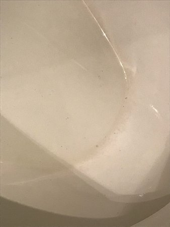 Carnival Sensation: Ring around the toliet that was not cleaned the entire time I was on the sh