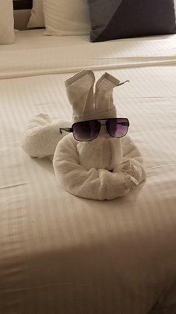 Norwegian Star: Love the towel animals