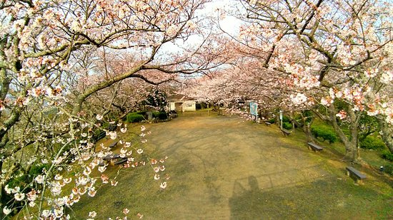 Oyama Park