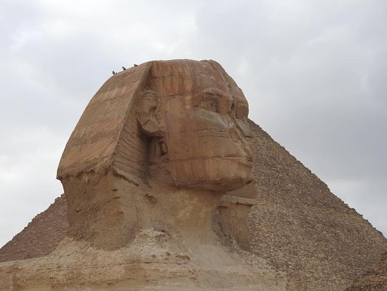 Go Discover Egypt