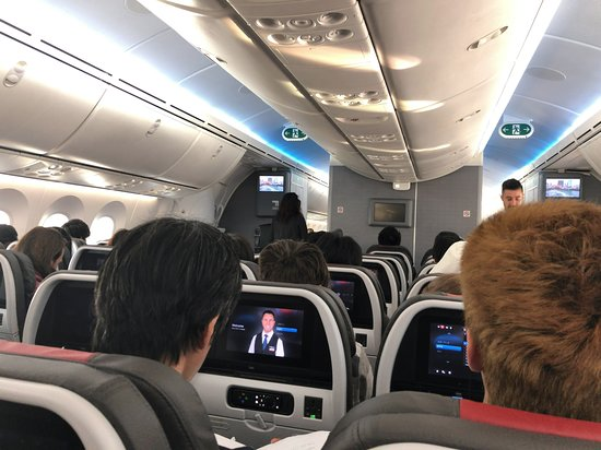 American Airlines: Inside the Economy Section on AA 27