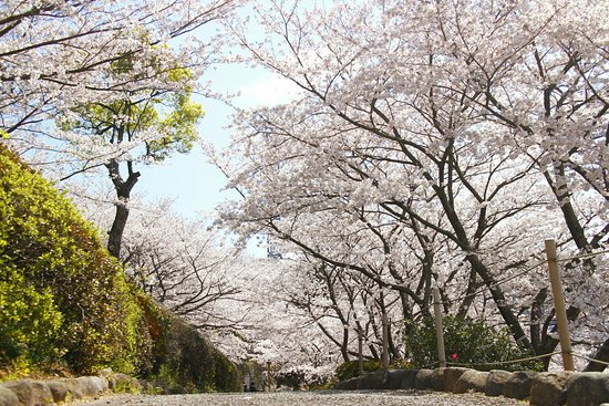 Nagao Castle Park