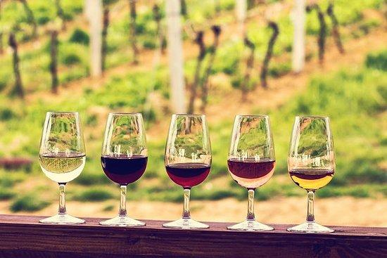 Tour per piccoli gruppi dei vini