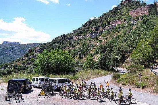 萨洛半日自行车之旅