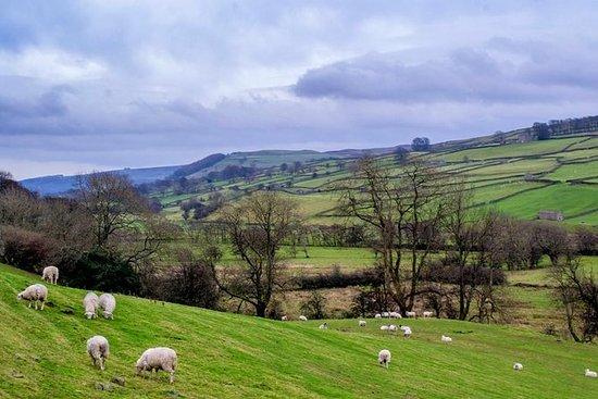 Fulldags Yorkshire Dales Tour fra York