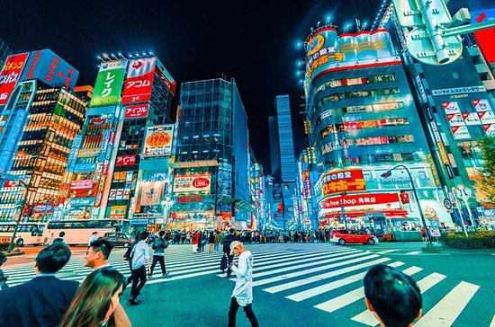 The prettiest winter illumination in Tokyo, Japan!: Let's go to the best night spot in TOKYO! ,In Roppongi and Kabukicho :Guided