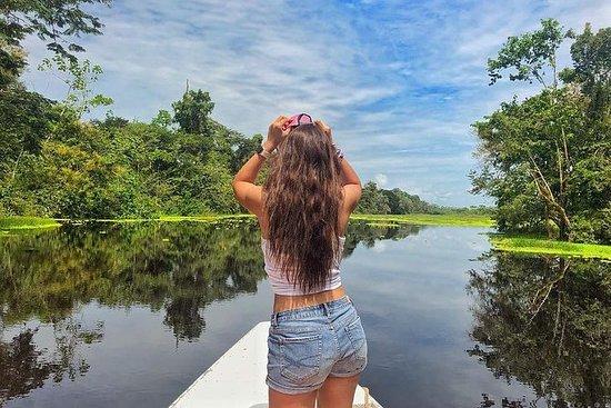 Iquitos Nyt Wildlife Best Price