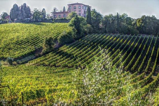 Bolgheri全天,超級托斯卡納葡萄酒之鄉