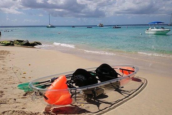 Recorrido en kayak por la costa oeste...