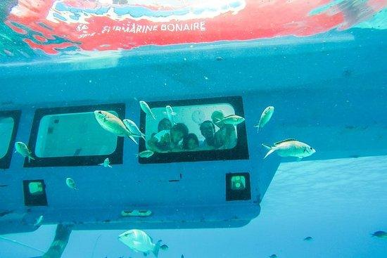 Tour regular semi-submarino