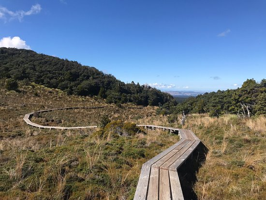 Waitonga Falls Track