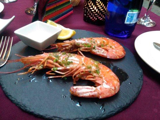 Huge shrimps
